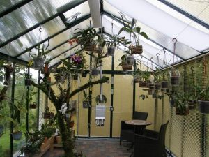Greenhouse,-home-and-garden